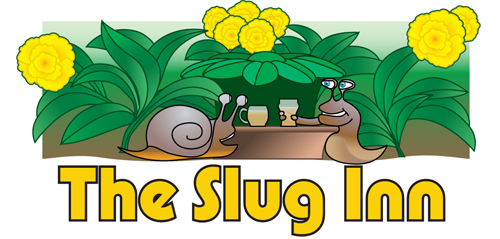 slug trap, slug pub, slug and snail control for garden slugs, garden snails using the beer trap or yeast trap, slug killer, slug deterrent, slug deterent